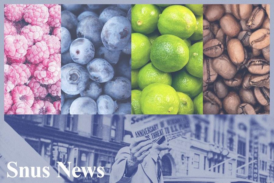 Forskere kritiske til forbud mot smaksatt snus