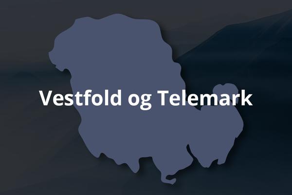 Vestfold og Telemark - Snusrapporten 2021
