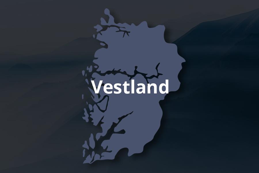 Vestland - Snusrapporten 2021